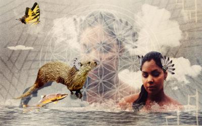 indianisches sternzeichen otter